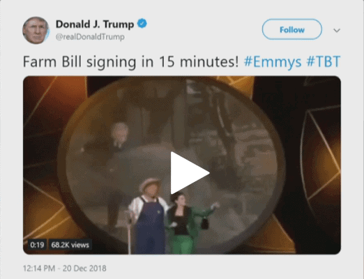 'Green Acres' theme song by Trump