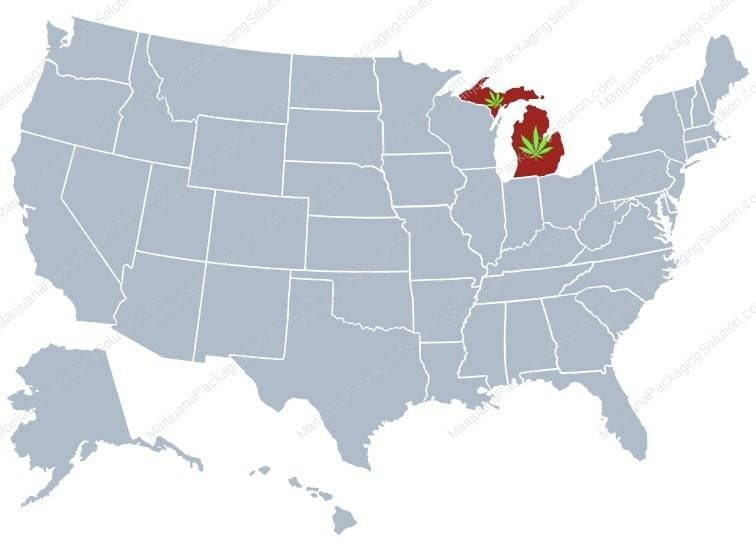 Michigan has become the 10th U.S. state to legalize recreational marijuana